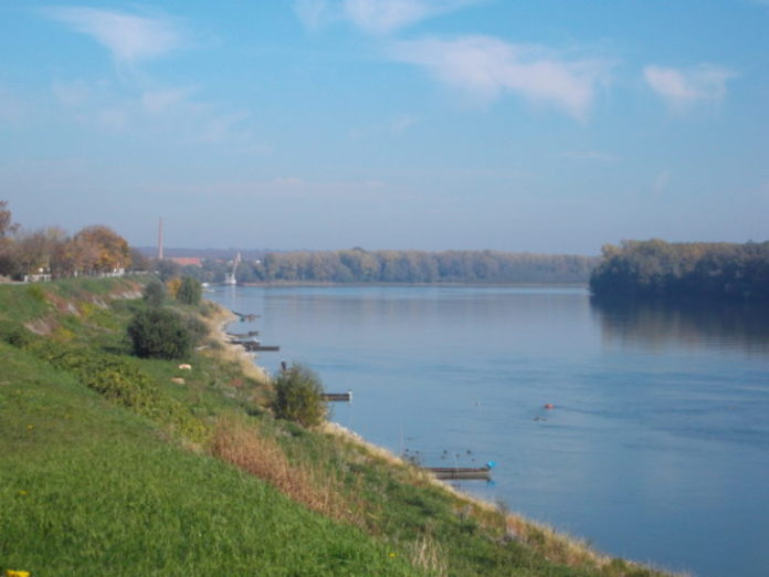 Dunav Dalj