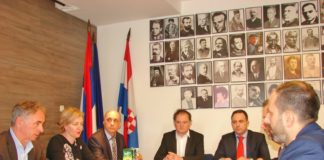 Dalibor Jevtić Kosovo SNV ZVO ZSO