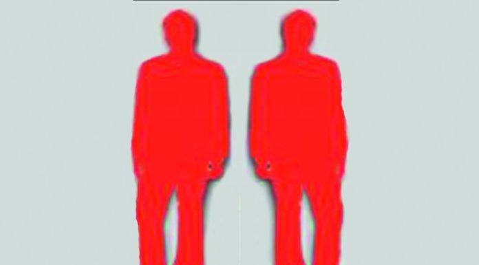 narcizam malih razlika