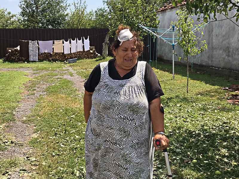 Nevreme Trpinja Ana Pojatić