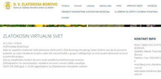 DV Zlatokosa Borovo