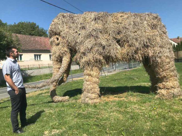 Goran Popović Mohovo dolina mamuta