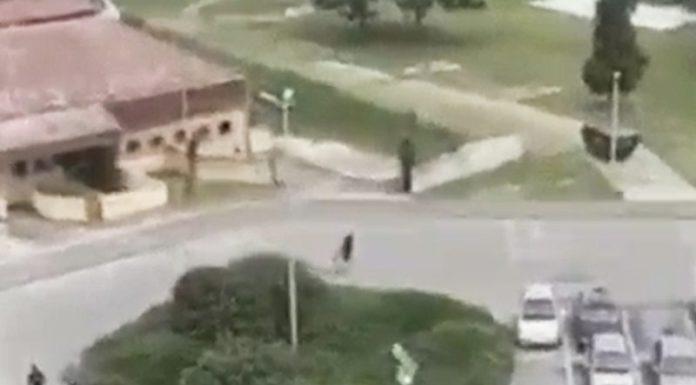 Bed blu bojs Vukovar napad na srbe u vukovaru