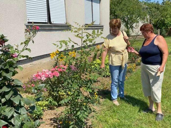 Desa Jankov i Ilinka Savičić Cvet po cvet cvetored