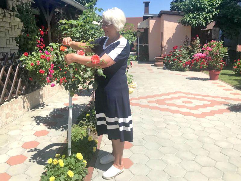 Gordana Knežević Cvet po cvet cvetored