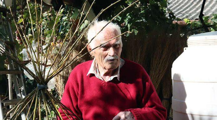 Dmitar Bubalo