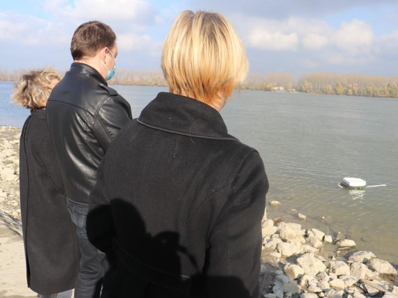 Bojan Glavašević Dunav tekst