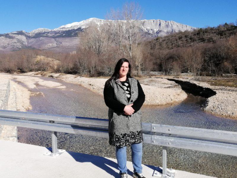 Most na krčiću Svetlana Baša