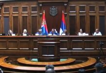 Sednica Odbora za dijasporu i Srbe u regionu